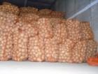 """Оптом картофель """"Гранада"""", """"Бэлла Росса"""""""