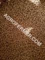 Семена сои ABEE Канадский трансгенный сорт (элита) http://agro-ukrain