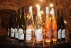 продам вино на всi смаки...
