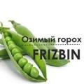 семена Озимый горох Фризбин/FRIZBIN (Канада) *Двуручка