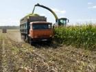 уборка кукурузы на силос сенаж заготовка кормов Харьков