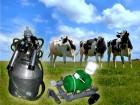 Доильный аппарат для коров «Доярочка»