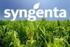 «асоби захисту рослин Syngenta
