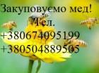 Оптова закупка меду.