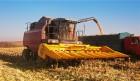 Жатки для уборки кукурузы марки ЖК-82