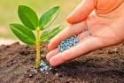 Купим средства защиты растений