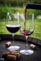 –еализуем вино заводское от 27 грн.лт.