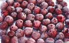 Купим вишни замороженную оптом