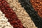 Куплю на постоянной основе: нут, фасоль,зеленый горох, бобы, спельту.