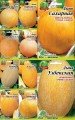 Насіння Дині - пакування Гігант оптом семена Дыни
