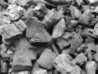 Купим древесный уголь оптом