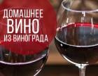 Закарпатское домашнее вино