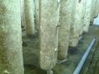 Продам солому после выращивания гриба