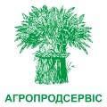 Пропонуємо насіння ярої пшениці сортів Септіма та КВС Шірокко