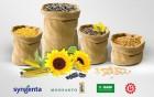 гибриды подсолнечника и кукурузы, пшеницы, ячменя, сои и рапса