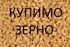 Компанія на постійній основі проводить закупівлю зернових культур!!!