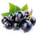 Продам ягоды черной смородины, швидко погрузка! 20 t
