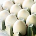 яйца столовые