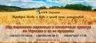 Ж/д перевозки зерновых и масличных культур по Украине и за ее пределы