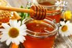 Куплю мед подсолнуха по высокой цене