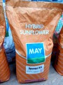 Семена подсолнечника Армада (евролайтинг)