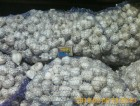Продам яровой чеснок урожай 2017 г.35- 40 грн/кг (500 кг)