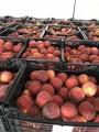 Персики и нектарин из Греции. Прямые поставки!