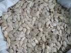 Тыквенная семечка, гарбузове насіння