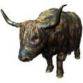 закупаем коров Быков телят дорого
