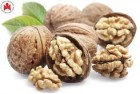 грецкие орехи опт