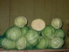 "Продам капусту ""Анкома"""