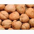 Покупаем грецкий орех( кругляк) co светлым ядром 2016 года