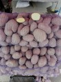 Оптовая продажа картошки