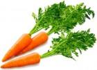 Морковный концентрат краситель из натуральной моркови