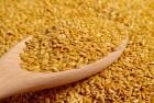 Куплю лен золотистый у производителей по всей Украине.