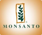 Рапс озимый семена Монсанто / Monsanto - сертификат производителя
