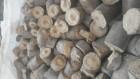 Биотопливо от производителя (дрова, пеллеты, брикеты)
