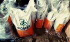 Семена кукурузы Pioneer/Пионер