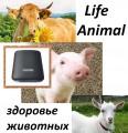 Помощь ветеринару прибор Life Animal. 4 мощности.