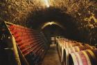 Закарпатське вино домашнє натуральне