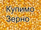 Куплю відходи пшениці, ячменю та кукурузи