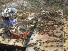 Соевая мука - для весенней подкормки пчел, белково витаминная добавка