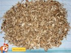 продам білі сухі гриби