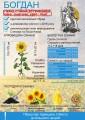 Насіння соняшника Богдан (стійкий до гербіциду Євролайтнінг)