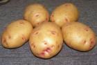 Продам  картофель опт с доставкой