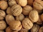 Компания Хорус Груп ТОВ купит Дорого грецкий орех в скорлупе 2017г.