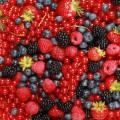 Фрукты и ягоды оптом.