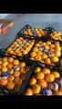 Мандарины Турция опт 13.50 грн. кг. без гнили и вмятин