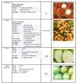 Свежие фрукты с Вьетнама