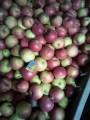 Продам оптом картоплю, цибулю, моркву, капусту, яблука, столовий буряк